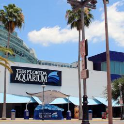 Secret Sea Life Superhero at the Florida Aquarium